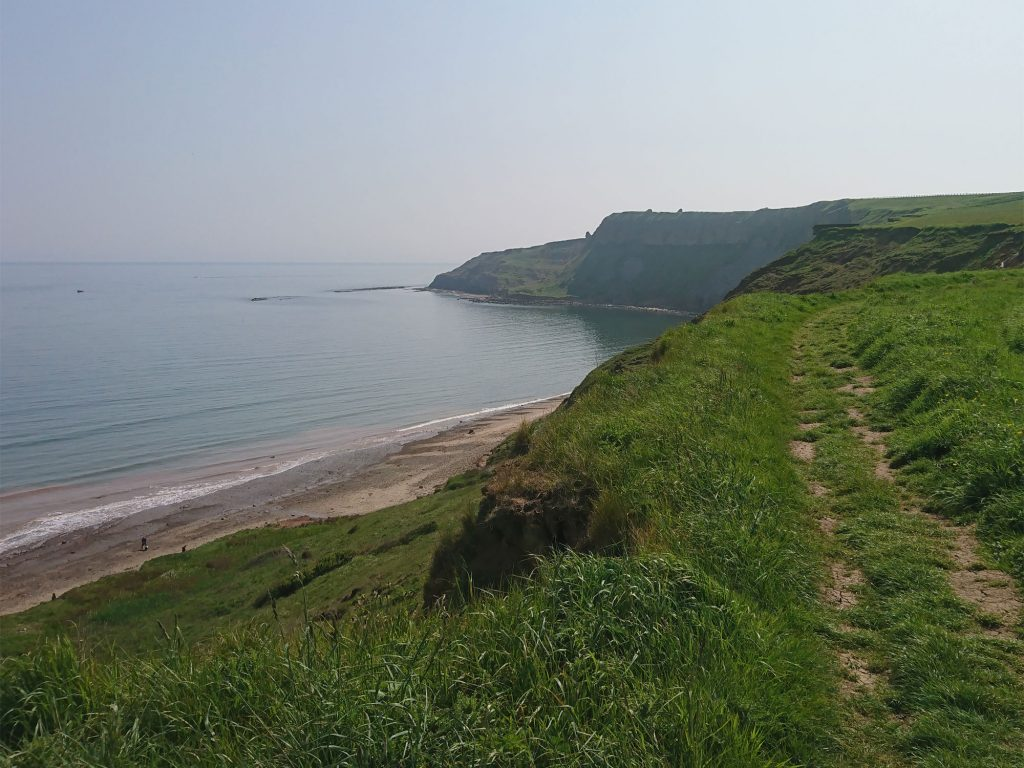 Cayton Bay Clifftop