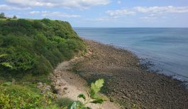 Yorkshire Coast – Picture Galleries