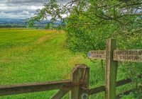 Centenary Way – 14.  Crowsdale Wood to Staxton Wold Farm