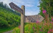 The Cleveland Way – Helmsley to Sutton Bank
