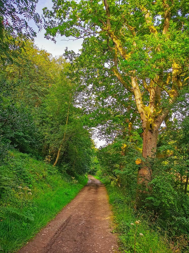 Cleveland Way Helmsley to Sutton Bank