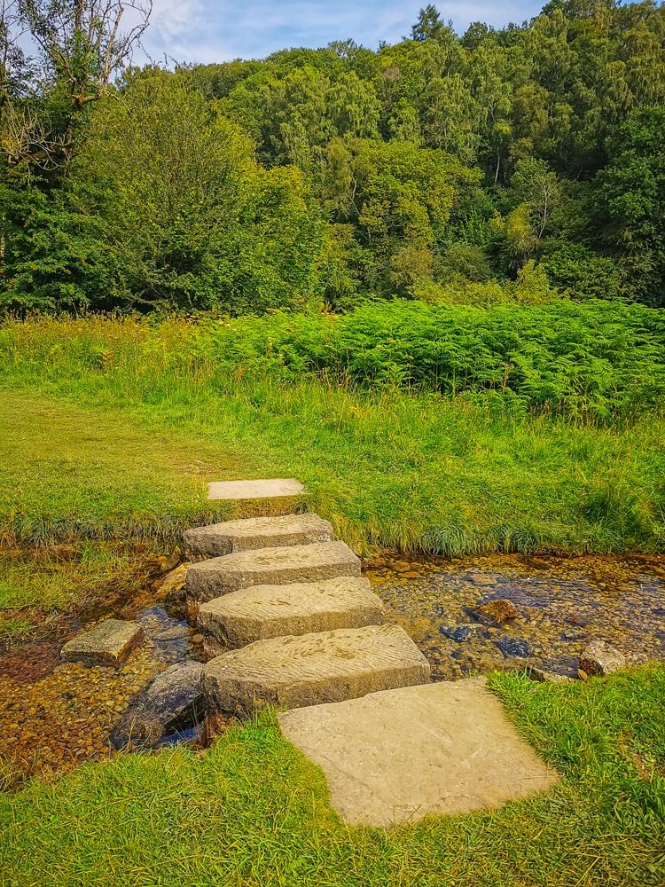 Cleveland Way Helmsley to Sutton Bank - Stepping Stones