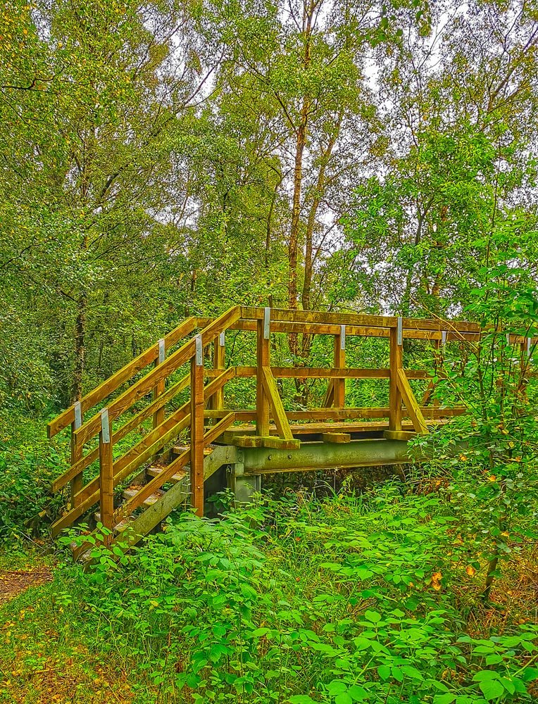 Cleveland way - Footbridge to Sutton Bank Visitor Centre