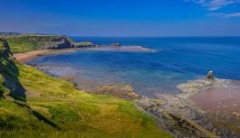 Saltwick Bay – Fossils, Whales and Submarines