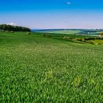 Crowtree Slack - Yorkshire Wolds