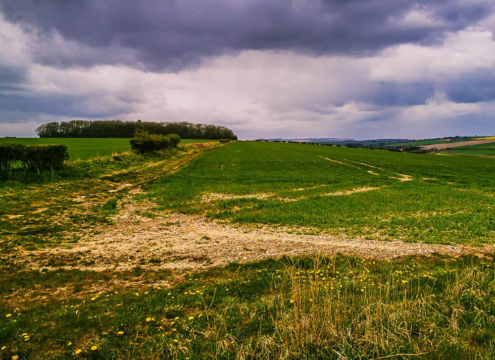 Yorkshire Wolds near Kirby Grindalythe