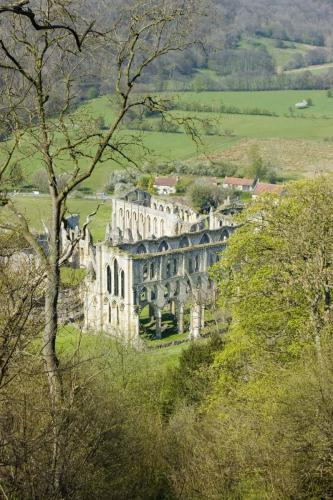 Bird's eye view of Rievaulx Abbey