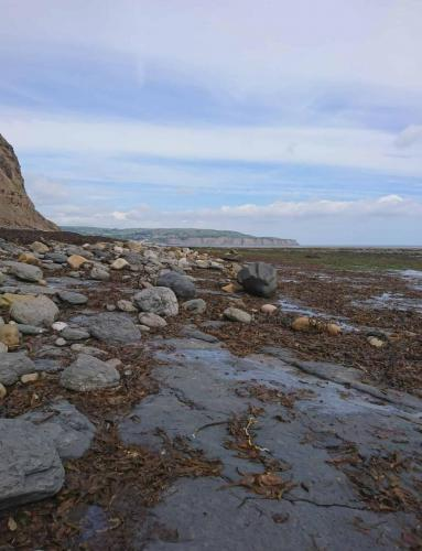 Rocky shore between Stoupe Beck and Ravenscar.