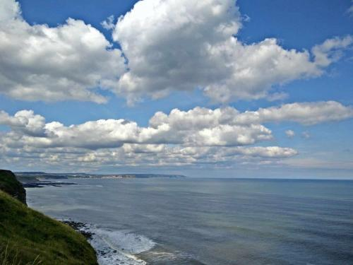 Cliff-Top-near-Filey-lookin