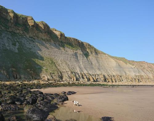 Red Cliff - Cayton Bay - North Yorkshire