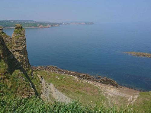 Cayton Bay to Filey