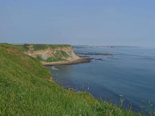 View from top of North Cliff, looking North towards Cunstone Nab and distant Scarborough.