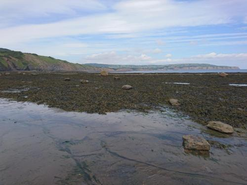 Rocks, Rock Pools and Seaweed!