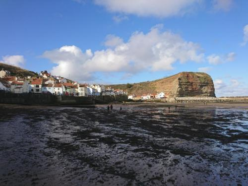 Staithes, Harbour