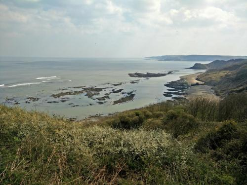 Cornelian Bay, near Scarborough, viewed from the clifftop.