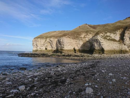 North Landing, Flamborough Head
