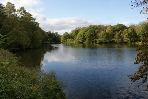 Nostell Priory - Lake View