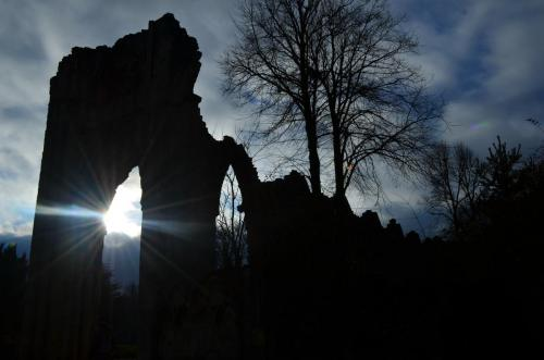St Mary's Abbey - Silhouette