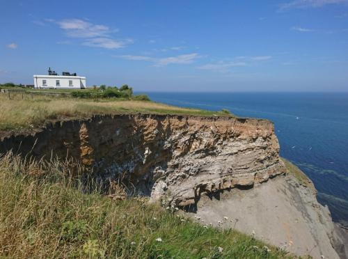 Whitby Lighthouse and Seabird Colony