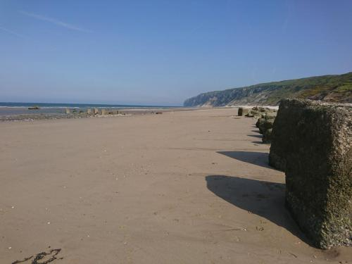 Reighton and Speeton Sands
